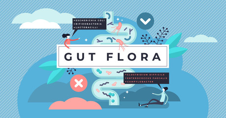 Gut flora vector illustration. Tiny gastrointestinal microbe person concept