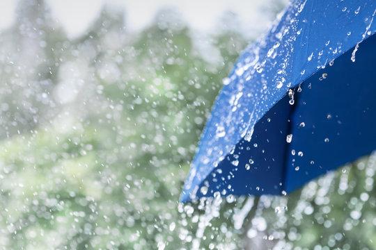 Blue umbrella under heavy rain against nature background. Rainy weather concept.