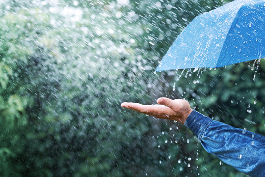 Hand and blue umbrella under heavy rain against nature background. Rainy weather concept.