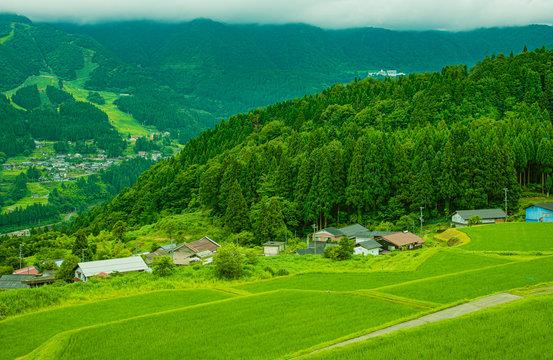 兵庫県・山深い森のまきば