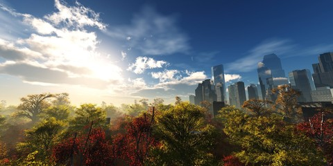 Wall Mural - Autumn park on the background of skyscrapers and the sky with clouds