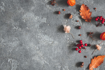 Autumn composition. Flowers, leaves, berries on black background. Autumn, fall, thanksgiving day concept. Flat lay, top view, copy space