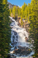 Fototapete - Hidden Falls