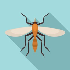 Brazil mosquito icon. Flat illustration of brazil mosquito vector icon for web design