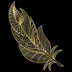 Feather isolated.  Vector illustration.