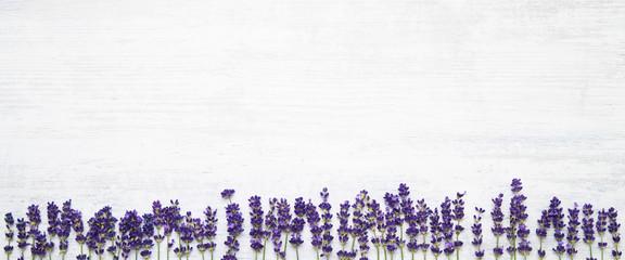 Lavender flowers border on white background. Copy space, top view. Summer background. Copy space,...