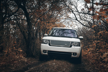 Saratov, Russia - October 11, 2015: White car Land Rover Range Rover is driving at countryside off-road at autumn