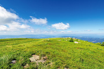 grassy meadow with rock on top of a hill. beautiful summer landscape in mountains. sunny weather with clouds on the blue sky.