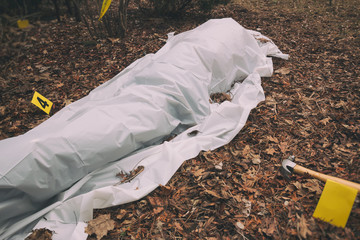 Victim of a violent crime under a sheet in a rural yard. With evidence markers and murder weapon.