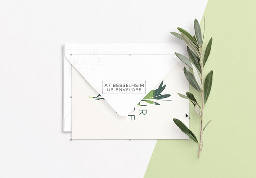 Mockup of Card with Envelope and Olive Branch