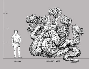Lernaean Hydra - mythological creature and human. Multi headed dragon drawing. Fearsome monster.