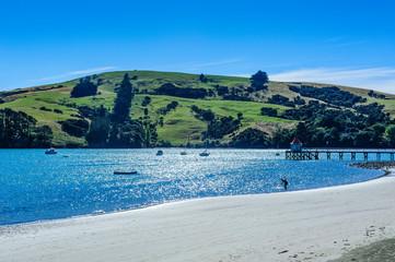 Beach in Akaroa, Akaroa harbour, Banks Peninsula, South Island, New Zealand