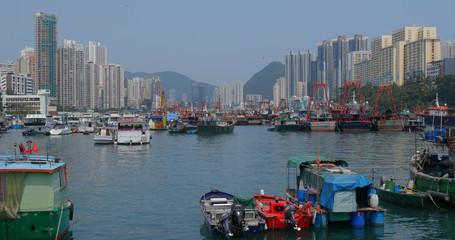 Wall Mural - Hong Kong fishing harbor port