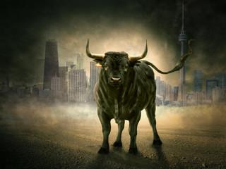 Stier in Stadt