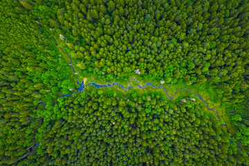 Summer warm sun light forest with river aerial view