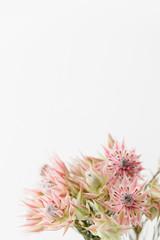 A detail of Kaaps groen blushing bride flower bouquet.