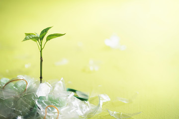 Plastic pollution control concept and green plant
