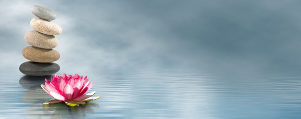 Garden Poster Lotus flower lotus flower and stones on water