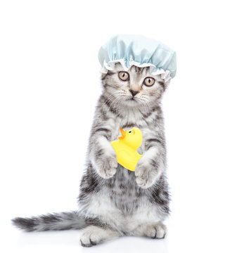 Funny kitten with shower cap holding rubber duck. isolated on white background