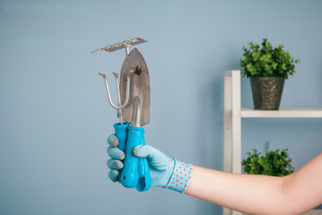 Hand holding garden tools on blue background