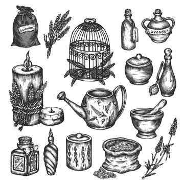 Lavender set isolated on white Vector hand drawn illustration Provance floral design Vintage collection of lavender flowers ink sketch herbal oil Medical plant