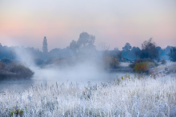 Foto op Plexiglas Zalm The first frosts in the autumn days. Grass and flowers in hoarfrost on the river bank in the fog in the early morning. Beautiful morning view with grass in hoarfrost.