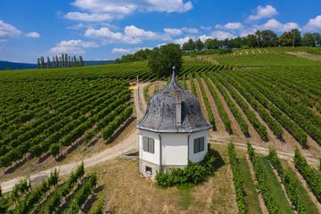 Die Weinberge bei Rauenthal von oben mit einer Schutzhütte im Vordergrund