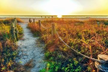 Foto op Aluminium Zwavel geel Path to Beach
