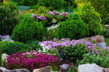 Beautiful view of the landscaped garden in the backyard. Landscaping landscaping area in summer.