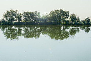 Trees are reflected on the water surface