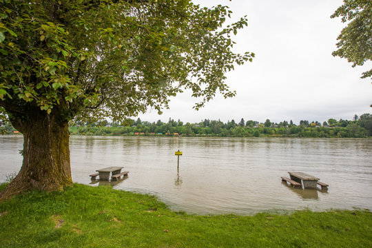 Flooded picnic site along the Fraser River, British Columbia, Canada.