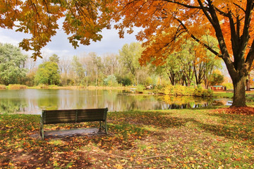 Midwest nature background with park view. Beautiful autumn landscape with colorful trees around the pond and bench in a city park. Lakeview park, Middleton, Madison area, WI, USA.