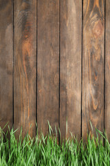 Fresh green grass near wooden fence. Space for text