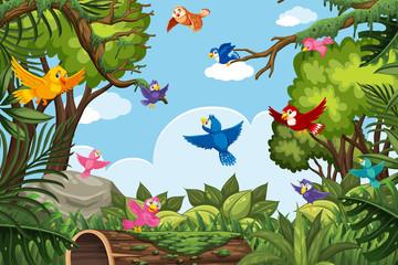 Colorful birds in jungle scene