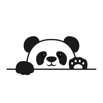 Cute panda paws up over wall, panda face cartoon icon, vector illustration