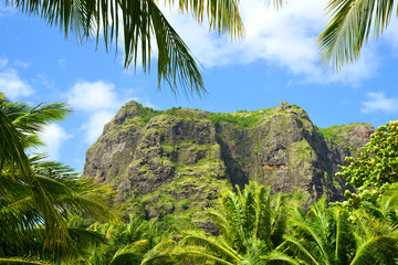 Le Morne Brabant mountain with coconut palm trees on the south of Mauritius island.