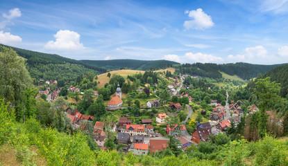 Panoramabild der kleinen idyllischen Bergstadt Wildemann im Harz im Sommer