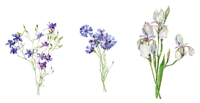 Watercolor bouquets of blue flowers