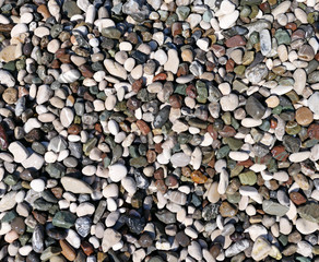 Wall Mural - Pebble beach