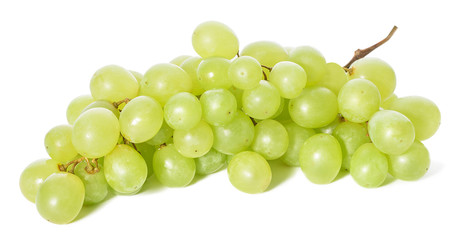 Grapes isolated Fototapete