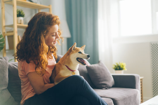 Pretty redhead woman is hugging cute doggy sitting on couch in apartment smiling enjoying beautiful day with beloved animal. People and pets concept.
