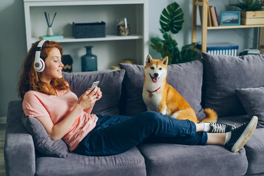 Joyful female student in headphones is listening to music and using smartphone sitting on couch with adoranle well-bred dog. People and modern lifestyle concept.