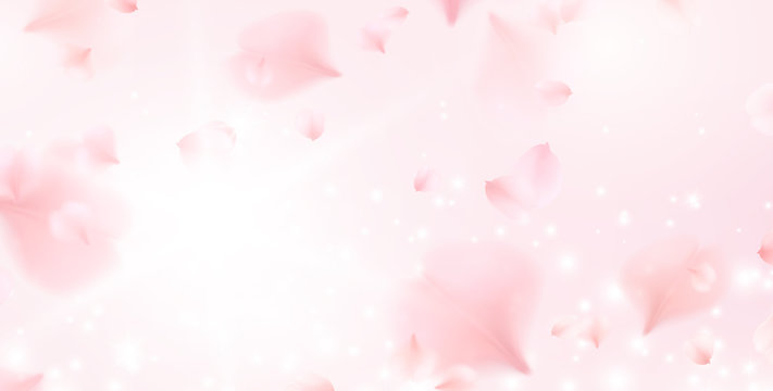 Petals of pink rose spa background. Realistic flying sakura cherry flower elements for romantic banner design.