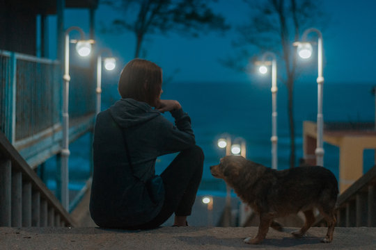 A woman in the light of street lamps and a stray dog in the evening.