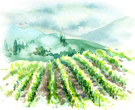 Watercolor Rural Scene with Hills, Vineyard  and Trees