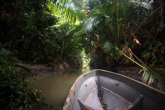 The motor boat in jungles of Papua New Guinea