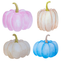watercolor clip art set of pink, blue and white pumpkins isolated on white background. Fall harvest clip art