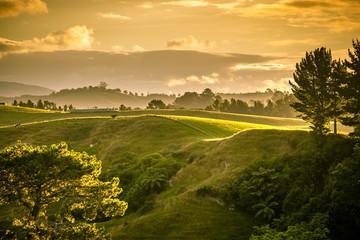 sunset landscape New Zealand north island Fotoväggar