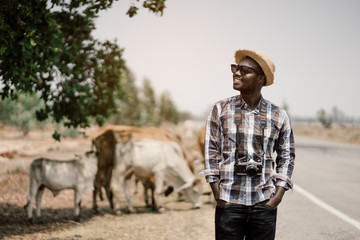 African man photographer traveling in countryside with cows..