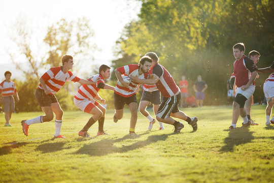 Rugby team tackling during scrimmage